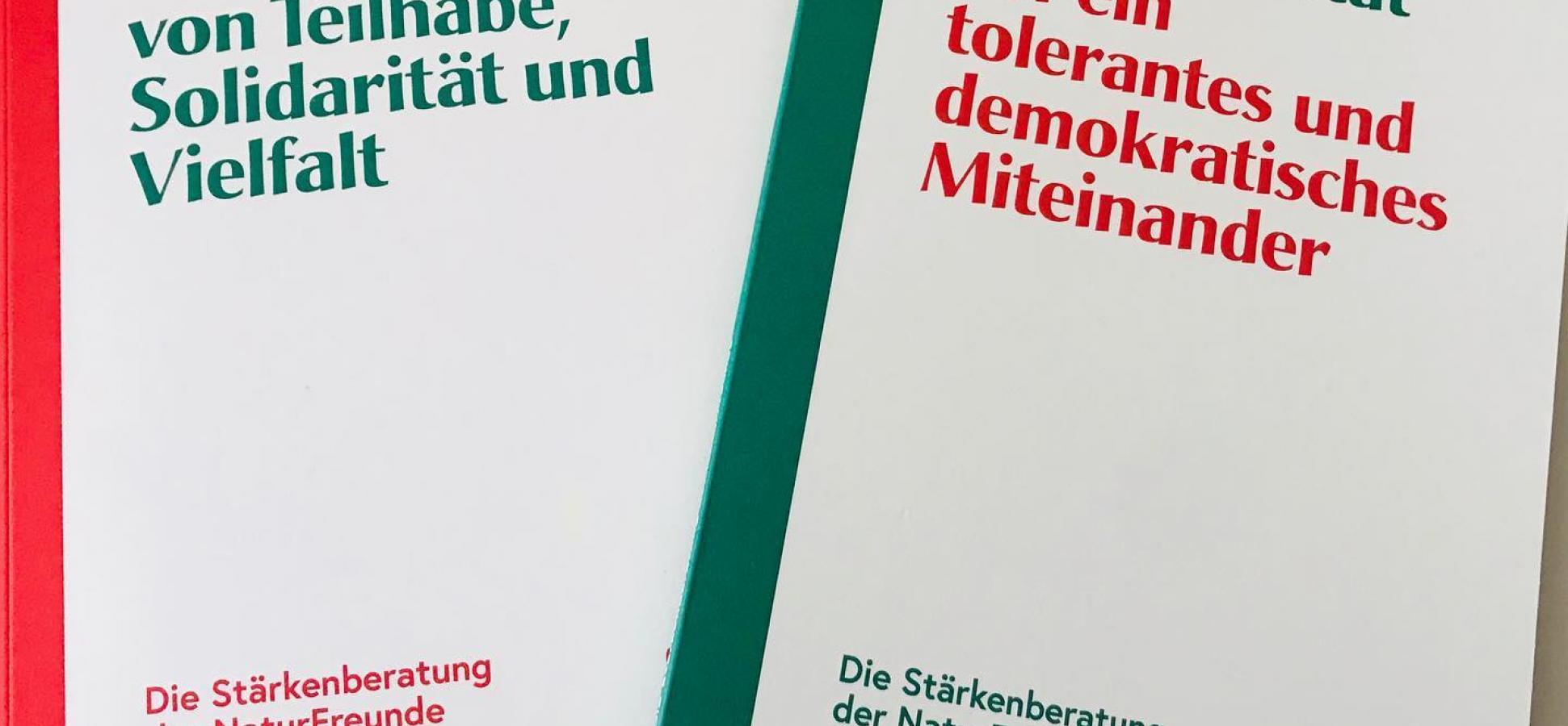 Handbuch Stärkenberatung